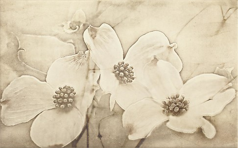 Cersanit Tuti inserto flower dekorcsempe 25x40 cm