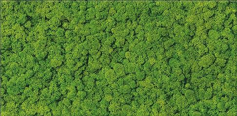 Cersanit fresh moss glass inserto dekorcsempe 29x59 cm