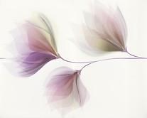 Loris white inserto flower 40x50 cmm dekorcsempe